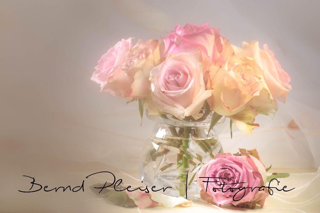 verträumter Rosenstrauß