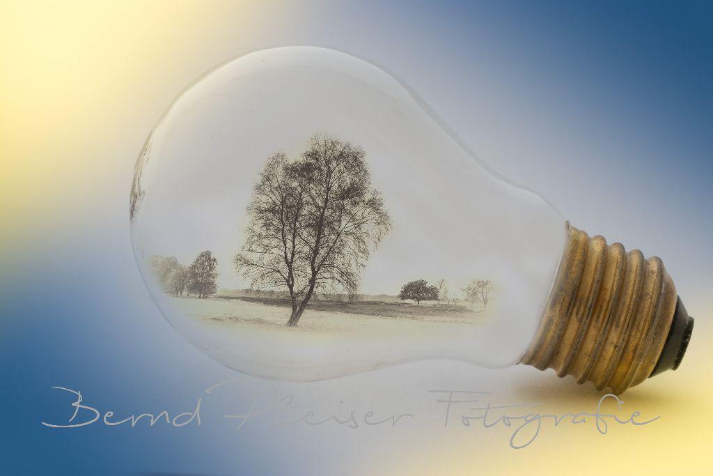 Landschaft in einer Glühbirne